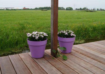 tuinontwerp met steiger