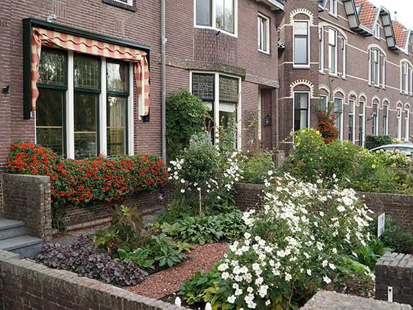 tuincursus onderhoudsarme tuin