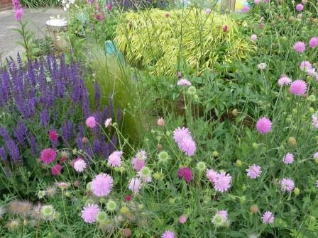 tuincursus Beplantingsplan maken