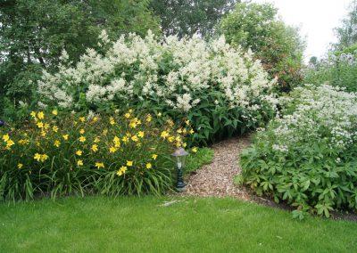 Waarder - beplanting met daglelie, Aruncus en Astrantia