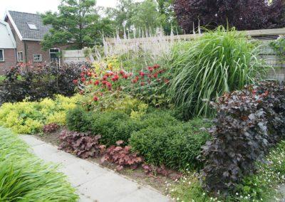 tuinontwerp Linschoten zomerborder