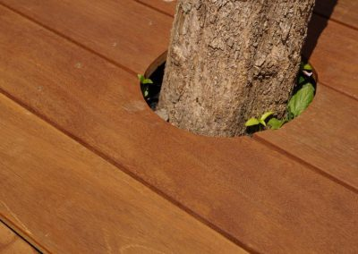 tuinontwerp Utrecht houten vlonder