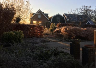 tuinontwerp beplantingsplan winterbeeld
