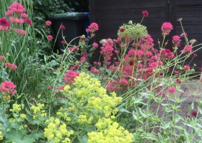 Tuin ontwerp rond - tuinarchitect Woerden