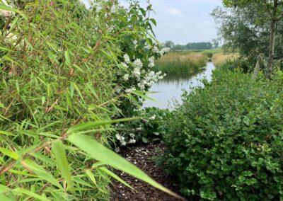 ontwerp tuin aan de dijk - Linschoten Montfoort Utrecht (10)