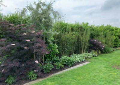 ontwerp tuin aan de dijk - Linschoten Montfoort Utrecht (4)